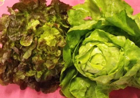 Les légumes de saison au printemps