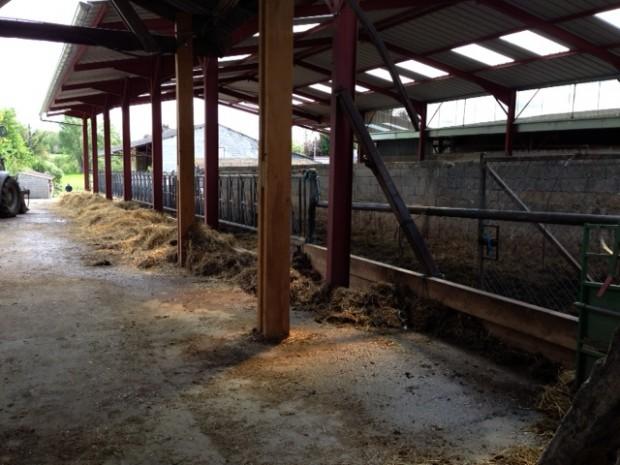 Un nouveau bâtiment d'élevage à la Ferme de Saint Thibault