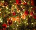Commandez votre volaille pour Noël directement à la Ferme