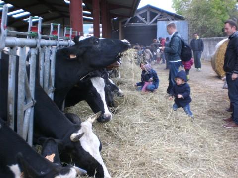 Balade du goût 2015 – La ferme de St Thibault vous remercie