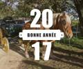 La ferme de Saint Thibault vous souhaite une excellente année 2017 !