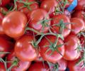 Les bienfaits de la tomate
